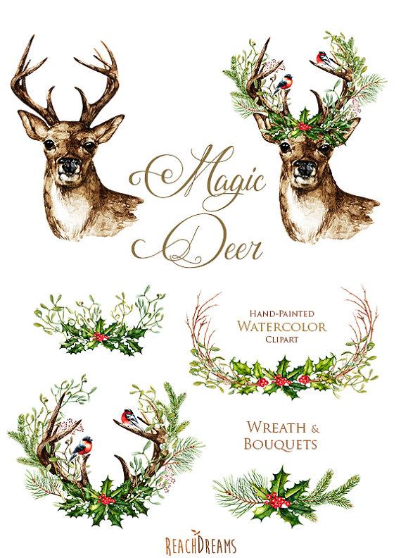 Christmas deer deers antlers. Antler clipart watercolor