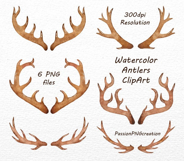 Png files antler clip. Antlers clipart watercolor