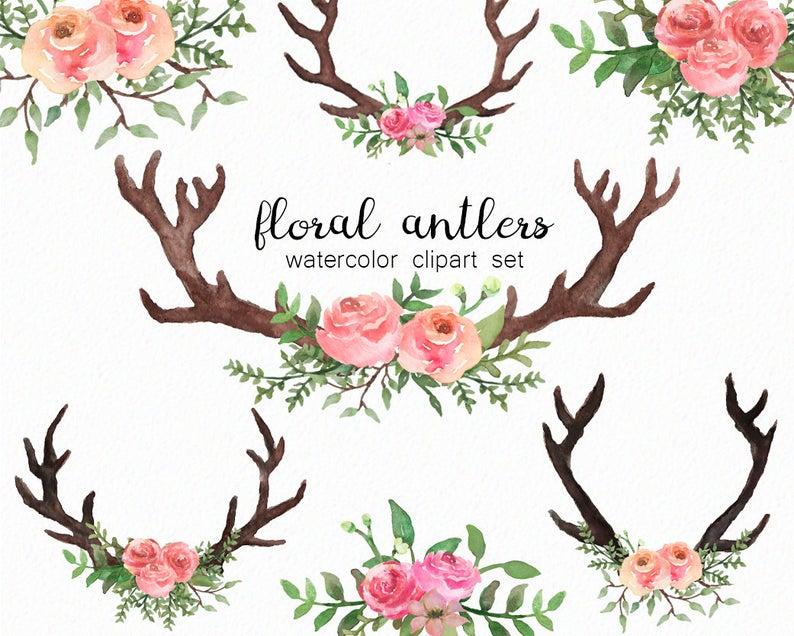 Antlers floral florals spring. Antler clipart watercolor