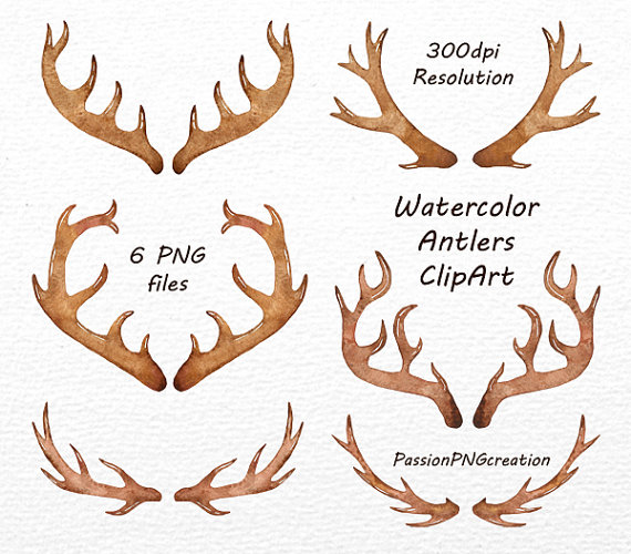 Antlers clipart watercolor. Png files antler clip