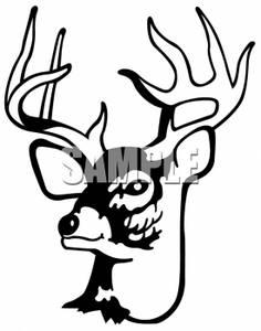 Antlers clipart white tail. Deer clip art panda