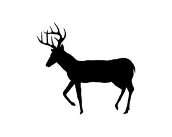 Antler clipart white tail. Deer silhouette at getdrawings