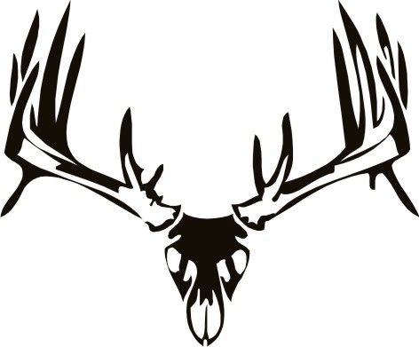 Antler clipart white tail. Tribal whitetail deer skull