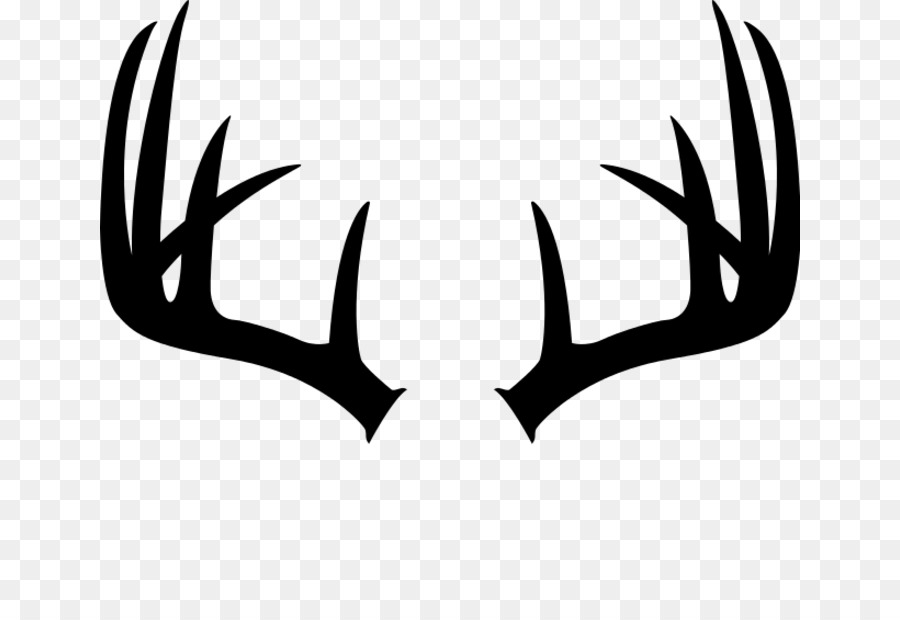 Antlers clipart white tail. Download free png whitetail