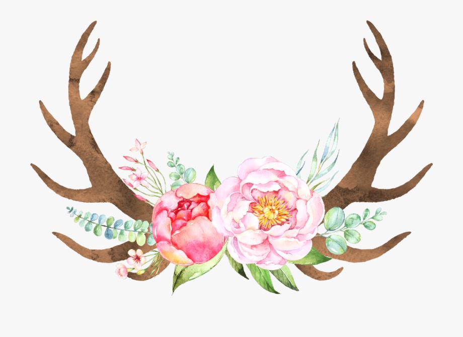 Boho bohemian flower flowers. Antlers clipart arrow