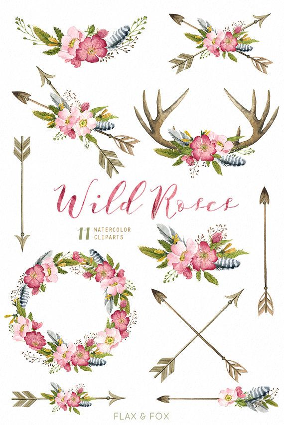 Wild roses watercolor bouquets. Antlers clipart arrow