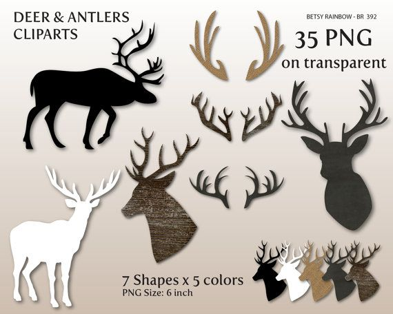 Deer antler cliparts png. Antlers clipart craft