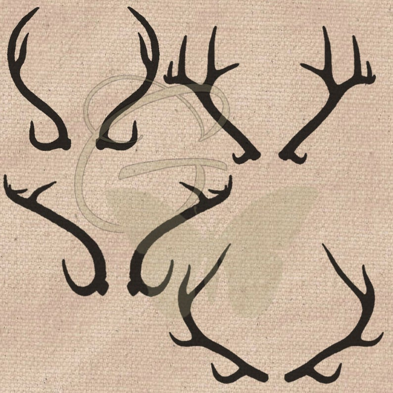 Hand drawn deer pack. Antlers clipart craft