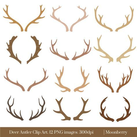 Antlers clipart deer antler. How to make horns