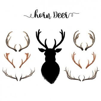 Antlers clipart deer antler. Horns free download best