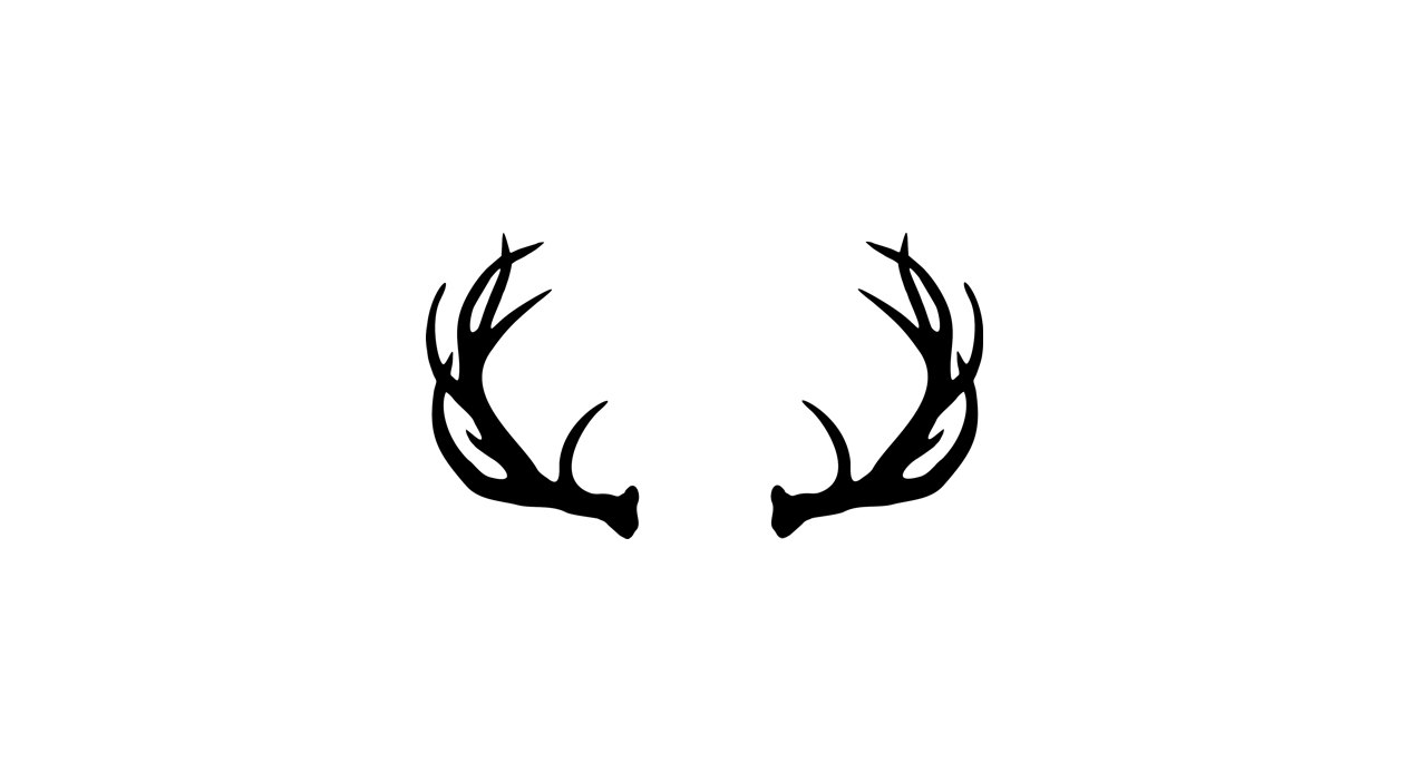 Deer . Antler clipart white tail
