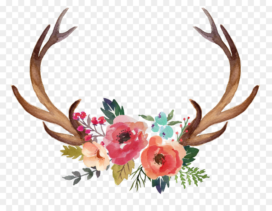 Antlers clipart deer horn. Antler moose flower clip