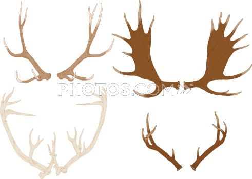 Stock illustrations four hand. Antlers clipart draw