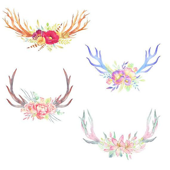 Pin on water colors. Antlers clipart feather