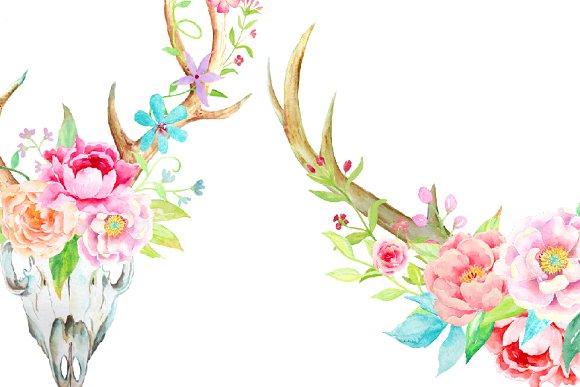 Waterolor antlers floral antler. Boho clipart transparent