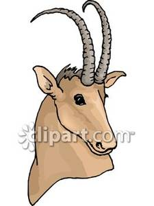 Antlers clipart gazelle. With curved horns royalty