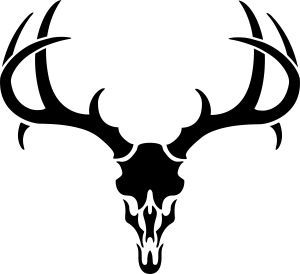 Antlers clipart simple. Deer skull drawing pics