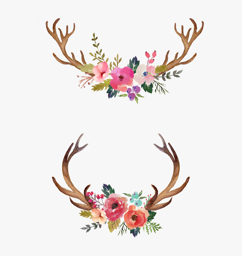 And flowers png free. Antlers clipart simple