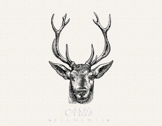 Antlers clipart transparent background. Items similar to stag