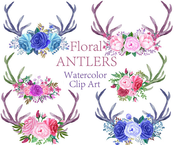 Floral flowers . Antlers clipart watercolor