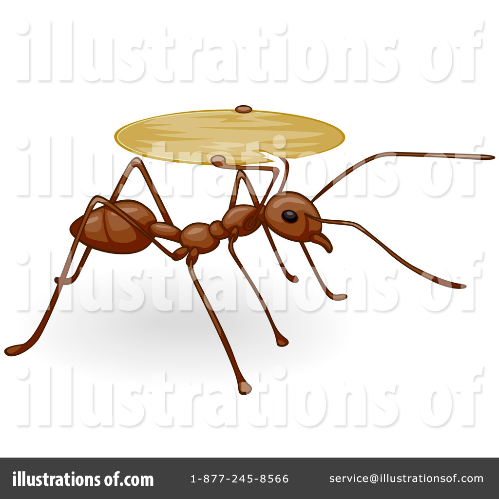 Ants clipart alphabet. Ant illustration by bnp