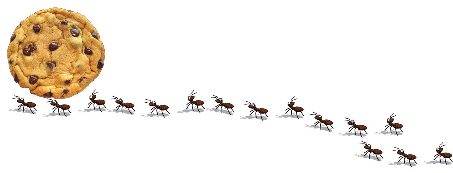 Ants clipart ants marching. Cilpart peachy design how