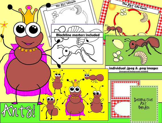 Ants clipart body. Instant download