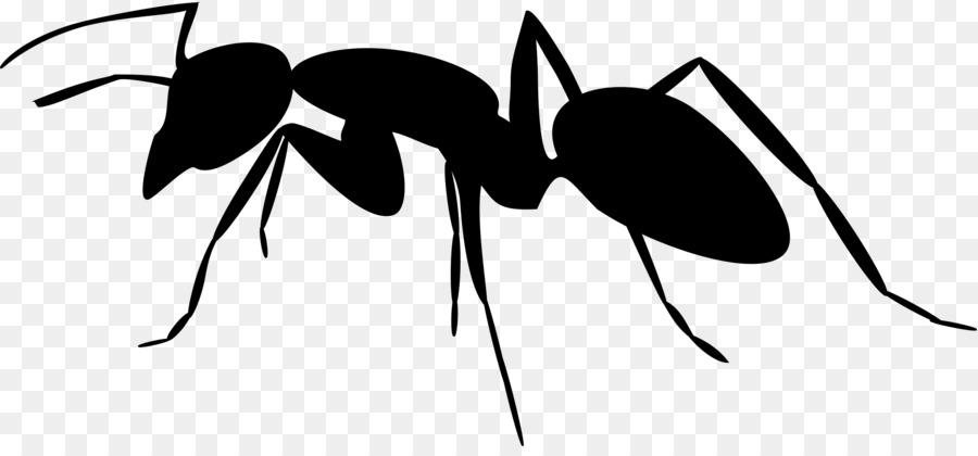 Silhouette clip art png. Ants clipart carpenter ant