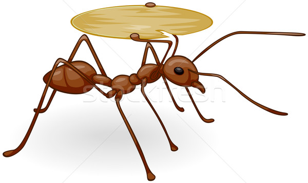 Ants clipart carry. Ant stock vectors illustrations