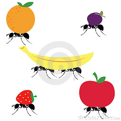 Carrying different fruits panda. Ants clipart carry