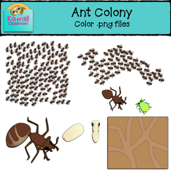 Ant teaching resources teachers. Ants clipart cooperation