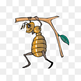 Ant colony bee leafcutter. Ants clipart cooperation