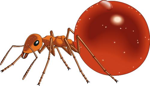 Image clipartix . Ant clipart face