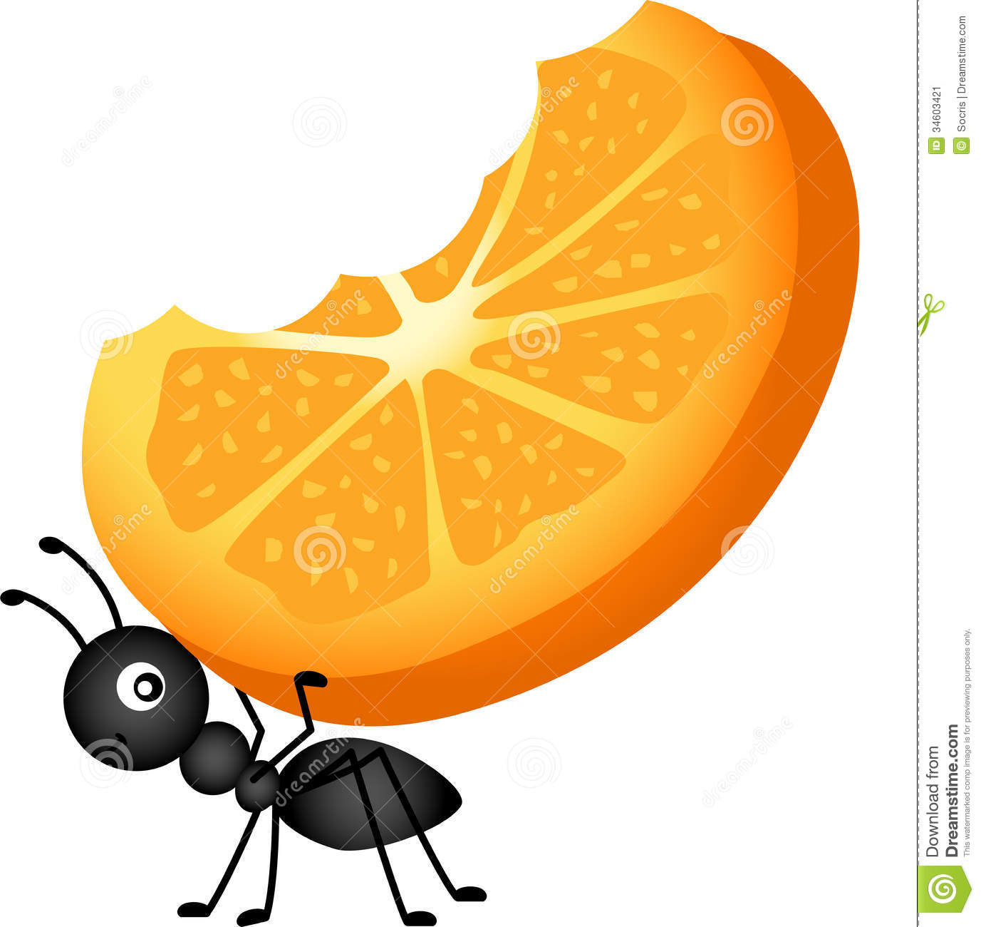 Ants clipart food. Picnic