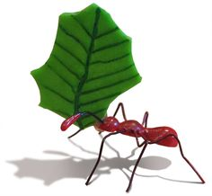 Ants clipart leaf cutter ant. Teach us the value