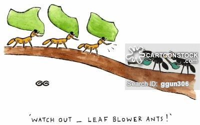 Ants clipart leaf cutter ant. Cartoons and comics funny