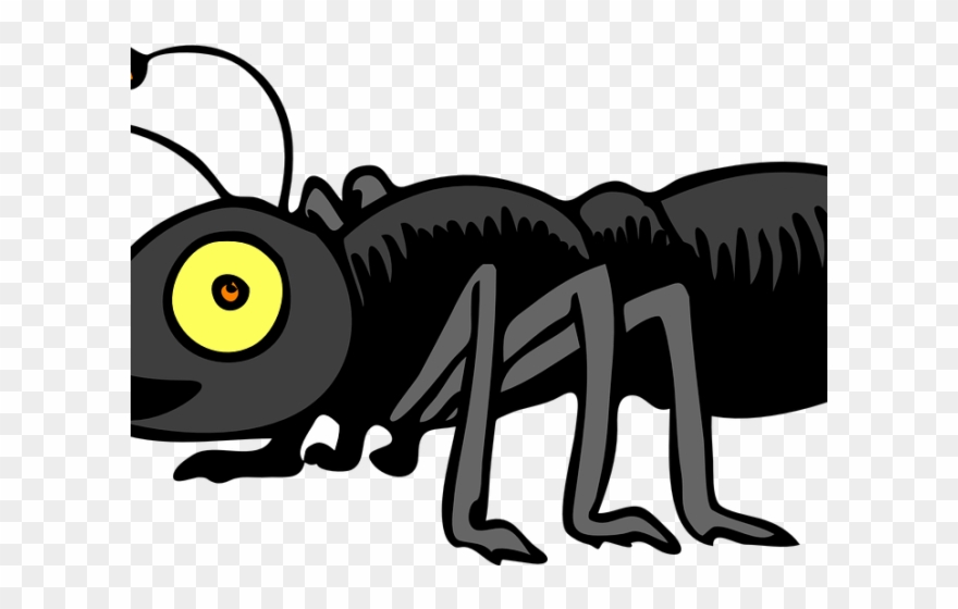 Ants clipart line. Clip art free ant