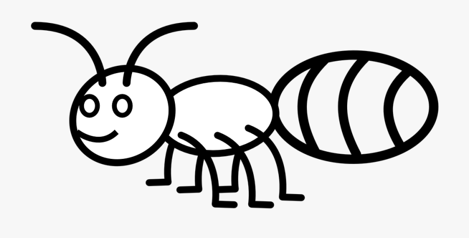 Ants clipart line drawing. Ant insect pismire emmet