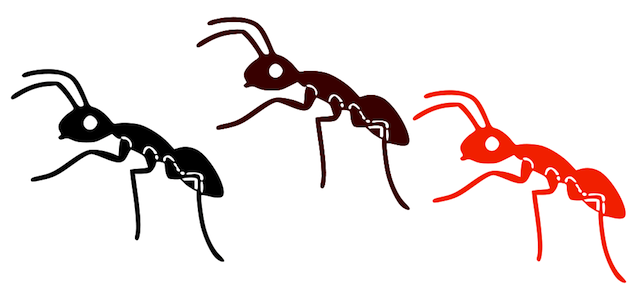 Ants clipart little ant. Cute marching png transparent