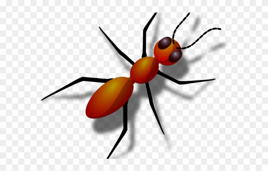 Hungry ant with legs. Ants clipart name