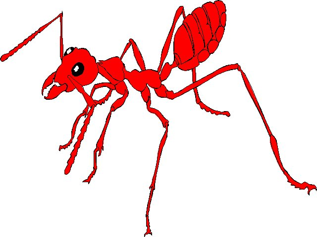 Jain world antjpg bytes. Ants clipart red ant