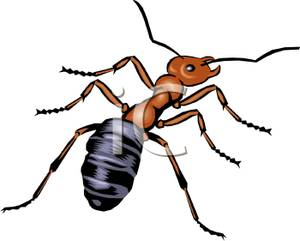 Meat eater ant royalty. Ants clipart sad
