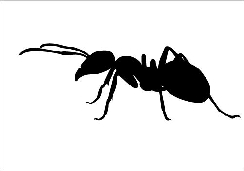 Ants clipart silhouette. Ant vector download vectors