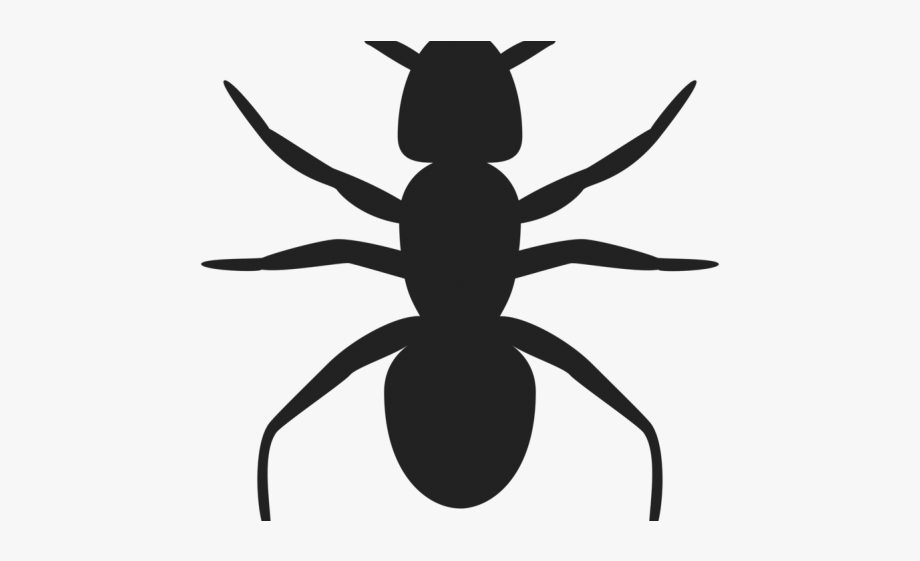 Ant clip art free. Ants clipart silhouette