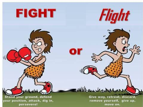 Anxiety clipart nervousness. The fight or flight