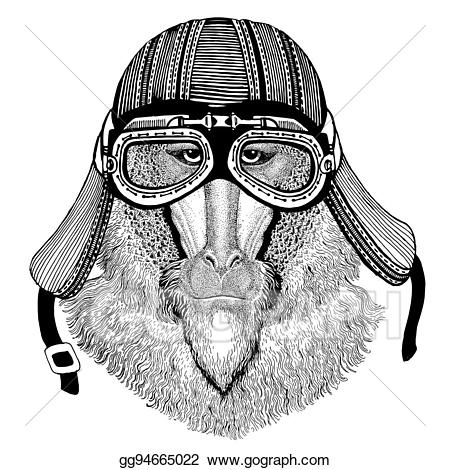 Monkey dog hand drawn. Ape clipart baboon