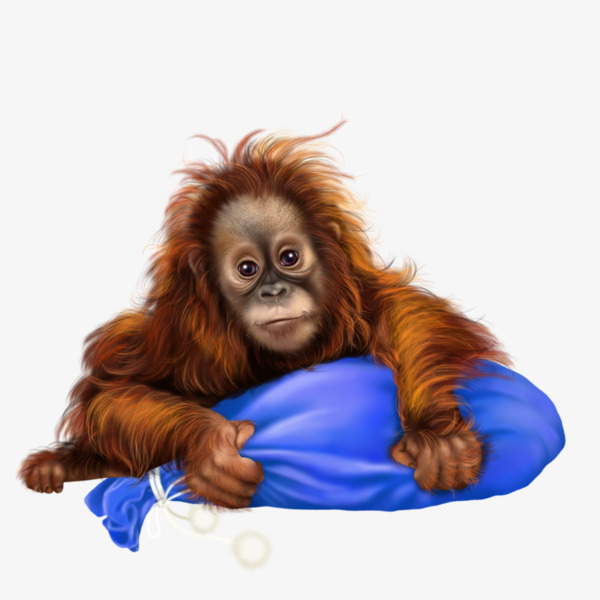 Ape clipart baboon. Cartoon painted animal apes