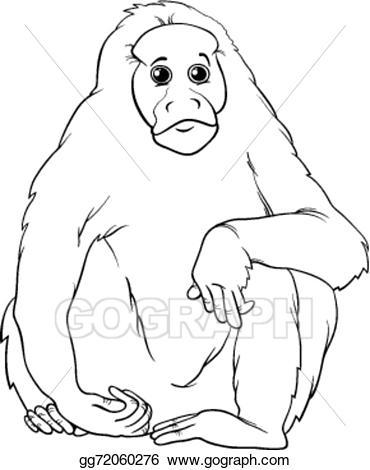 Ape clipart cartoon. Vector uakari animal coloring