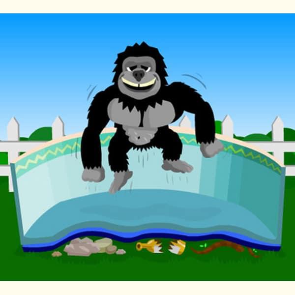 Ape clipart gorilla family. Floor padding round pools