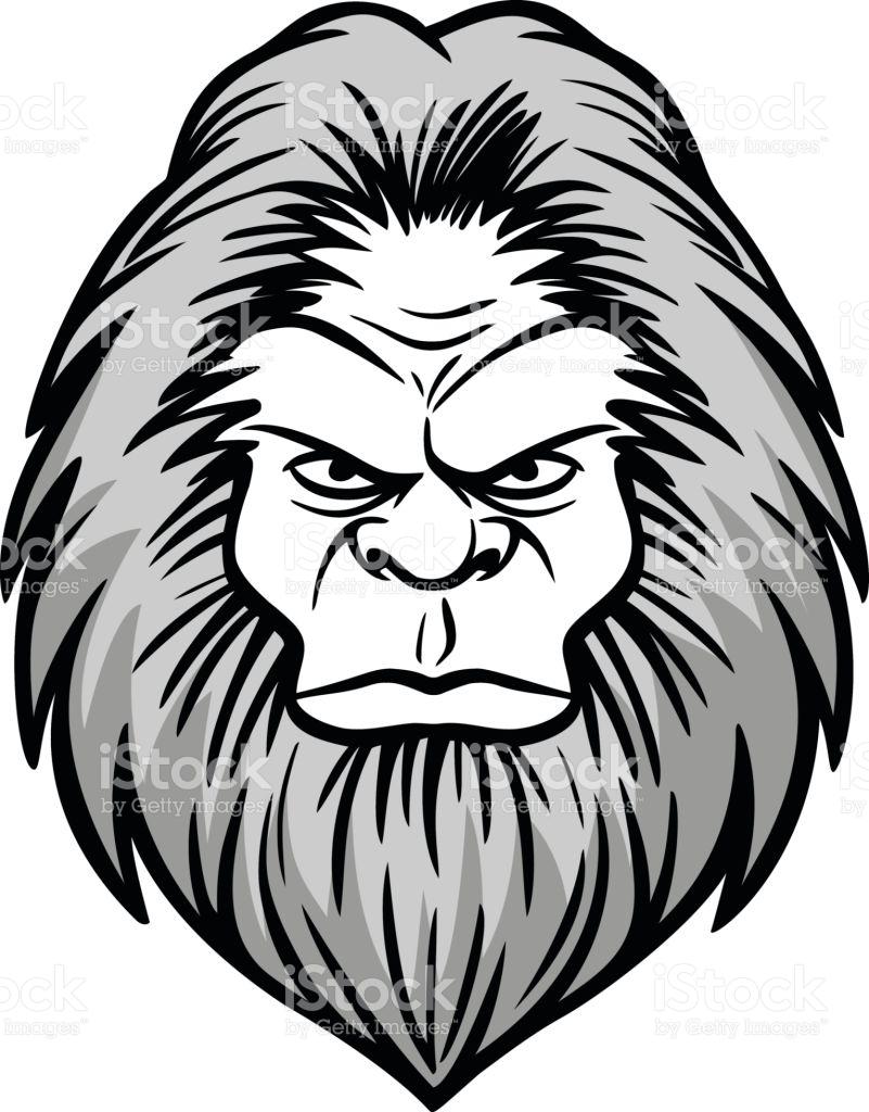Bigfoot clipart angry ape. Gorilla head drawing at